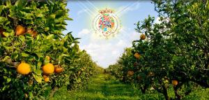 agricoltura due sicilie